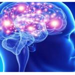 स्मरण शक्ति कसरी बढाउने ! पढ्नुहोस् स्मरण शक्ति बढाउन के गर्ने ?